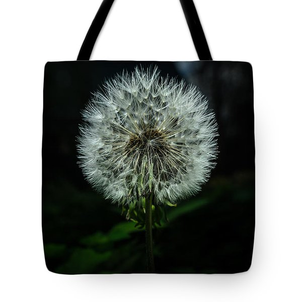 Tote Bag featuring the photograph Dandelion by Michael Goyberg