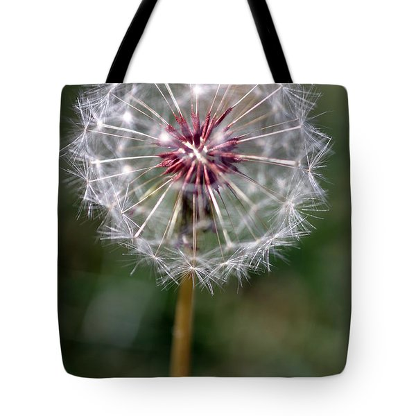 Tote Bag featuring the photograph Dandelion Seed Head by Henrik Lehnerer