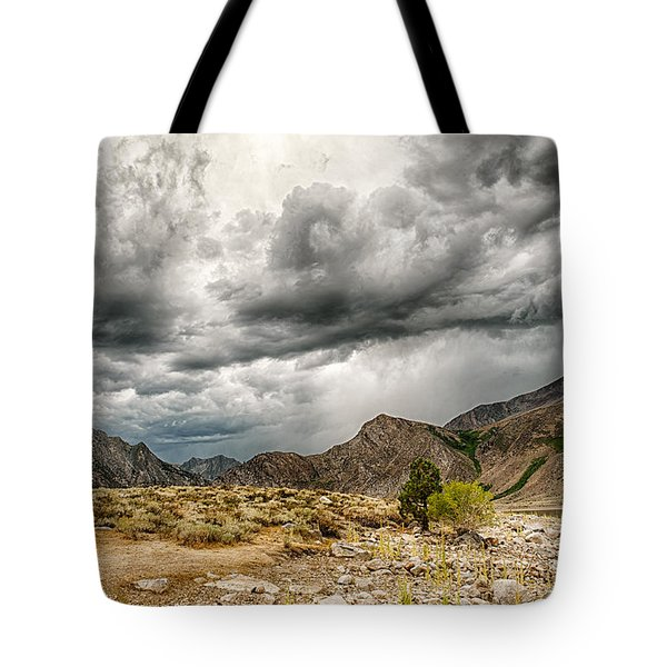 Dark Skies At Grant Lake Tote Bag by Cat Connor