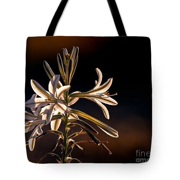 Desert Easter Lily Tote Bag
