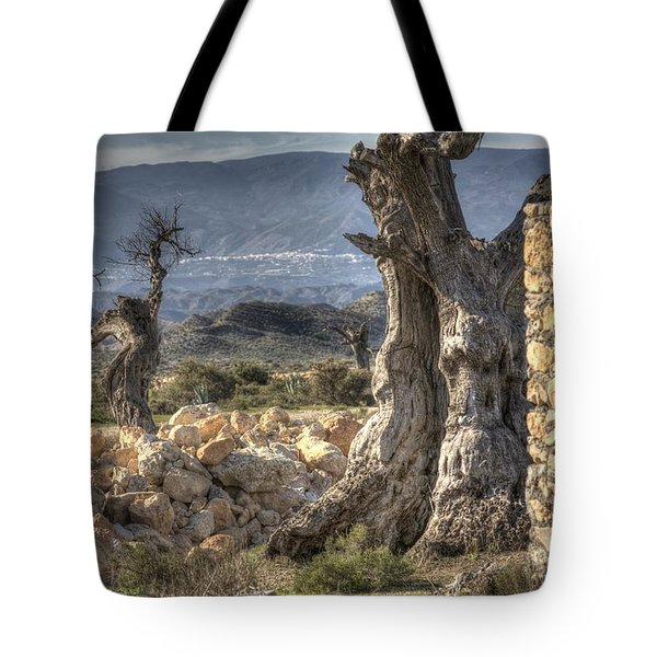 Deserted Tote Bag by Heiko Koehrer-Wagner