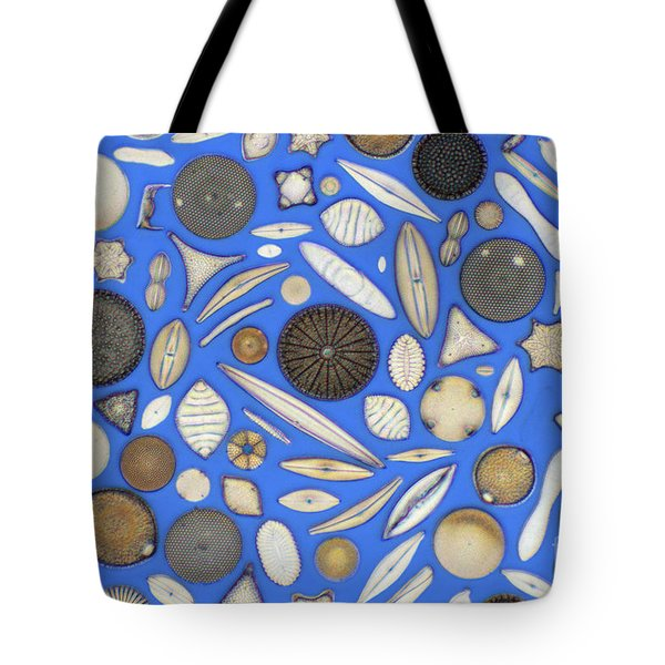 Diatoms Tote Bag by Kent Wood