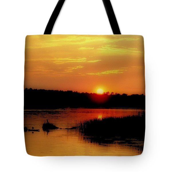 Discovery Tote Bag by Tom Druin