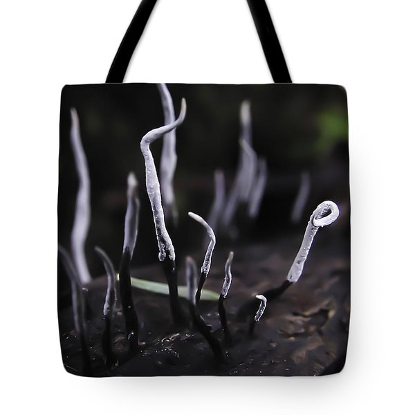 Fairy Fingers Tote Bag by Betty Depee