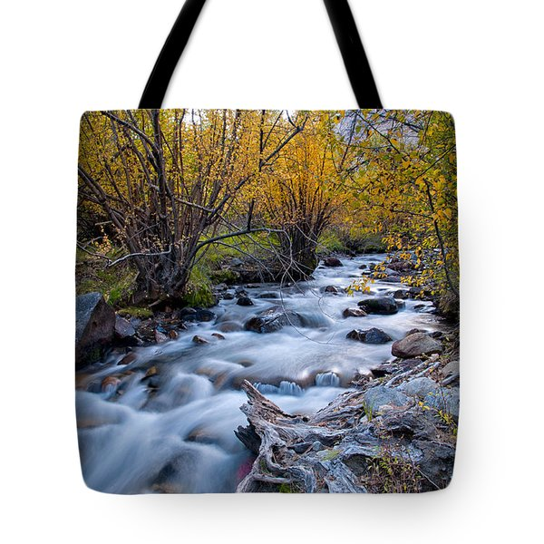 Fall At Big Pine Creek Tote Bag