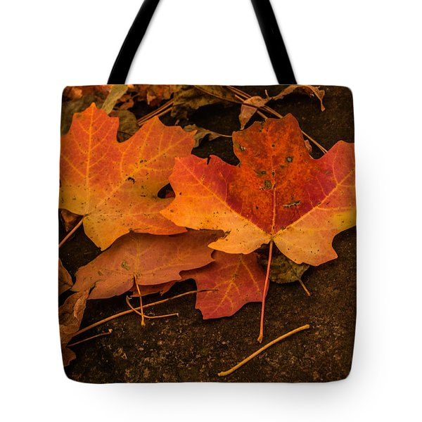 West Fork Fallen Leaves Tote Bag