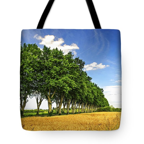 French Country Road Tote Bag by Elena Elisseeva