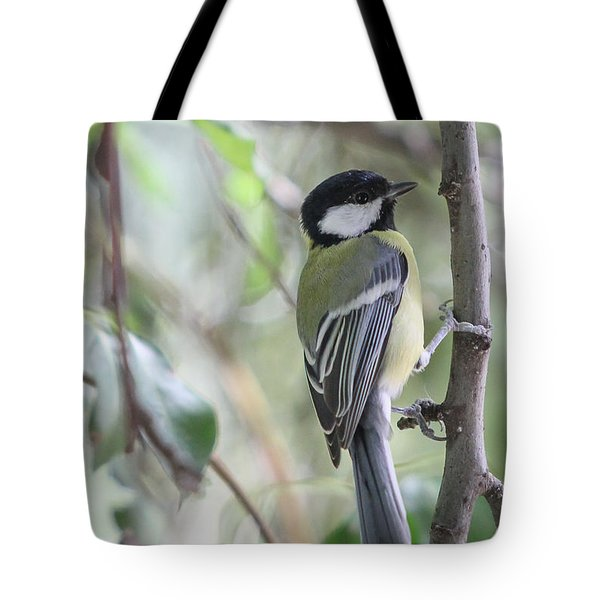 Tote Bag featuring the photograph Great Tit - Parus Major by Jivko Nakev