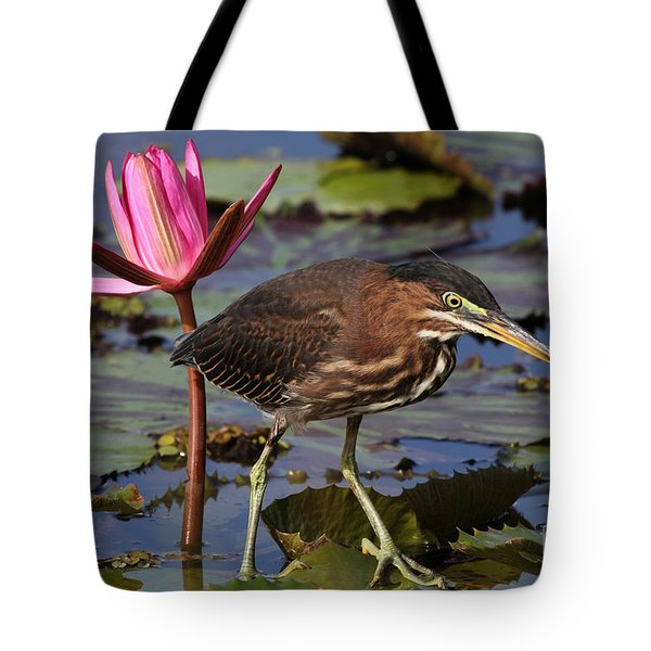 Green Heron Photo Tote Bag