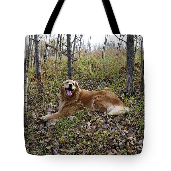 Happiness Is Tote Bag by Rhonda McDougall