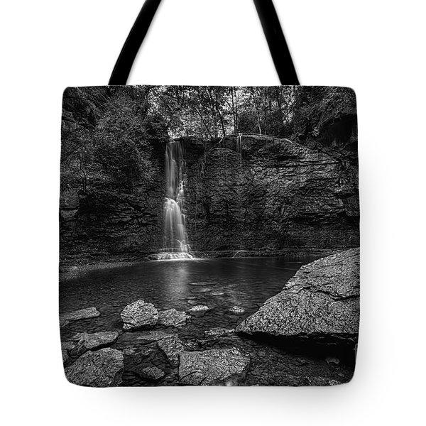 Hayden Falls Tote Bag by James Dean