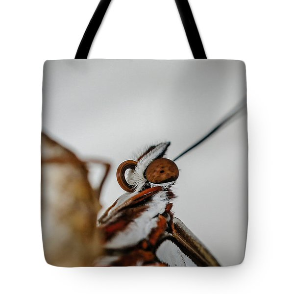 Here's Looking At You Tote Bag by TK Goforth