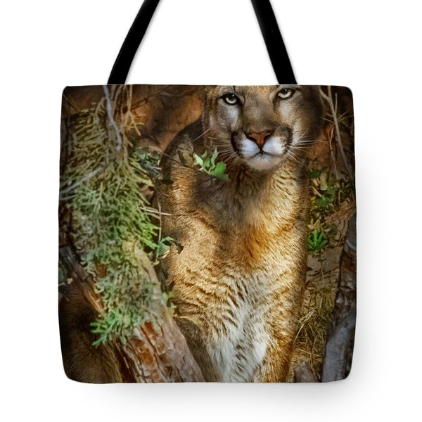 Tote Bag featuring the photograph Hiding by Elaine Malott