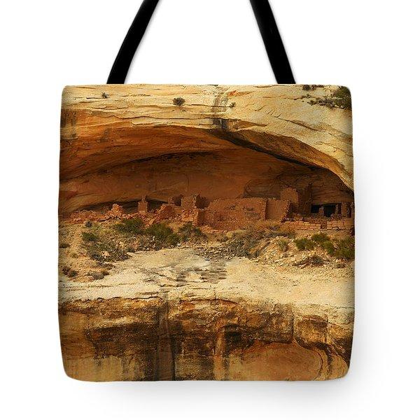 Horse Collar Ruins Tote Bag by Jeff Swan