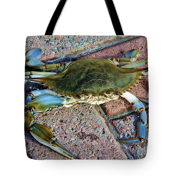 Tote Bag featuring the photograph Hudson River Crab by Lilliana Mendez
