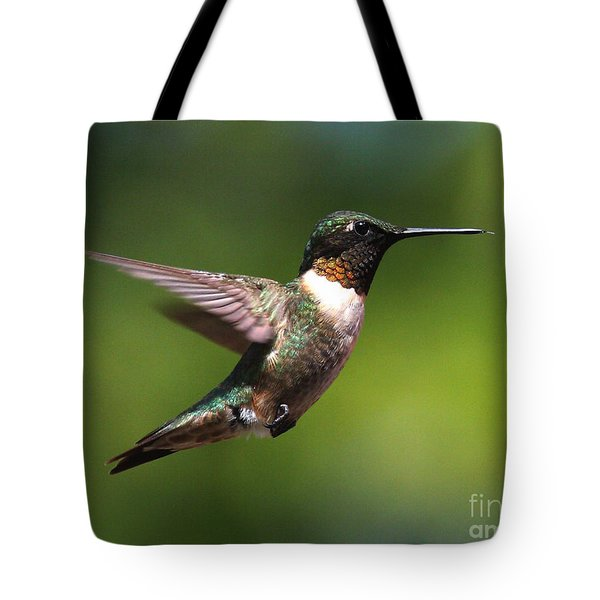 Hummer In Flight Tote Bag by Douglas Stucky
