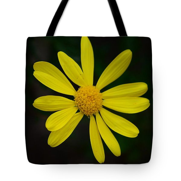 Tote Bag featuring the photograph Isolated Daisy by Debra Martz