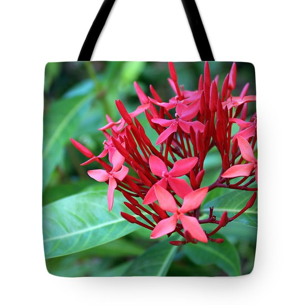 Jamaican Red Tote Bag