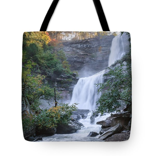 Kaaterskill Falls Square Tote Bag