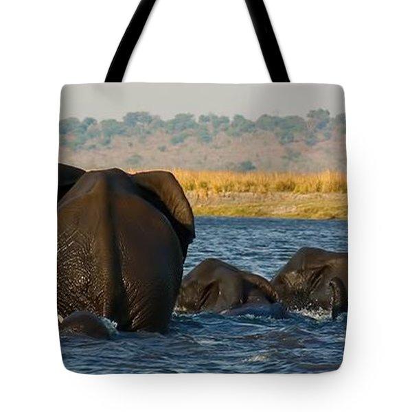 Tote Bag featuring the photograph Kalahari Elephants Crossing Chobe River by Amanda Stadther