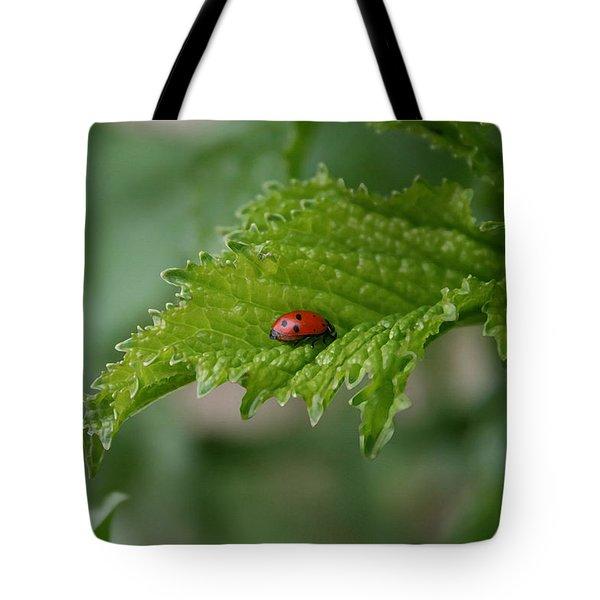 Ladybug Tote Bag by Ellen Henneke