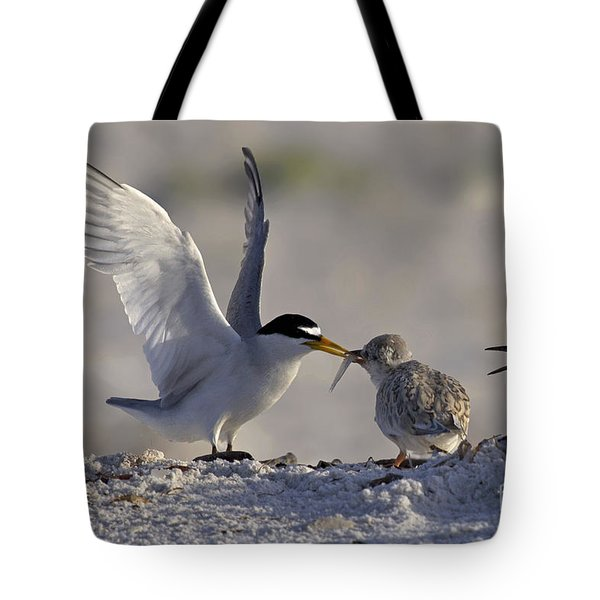 Least Tern Feeding It's Young Tote Bag by Meg Rousher