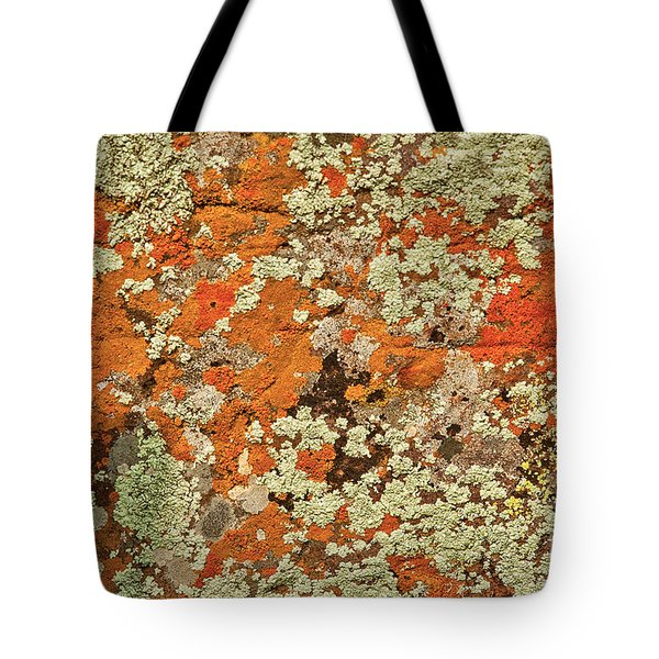 Tote Bag featuring the photograph Lichen Abstract by Mae Wertz