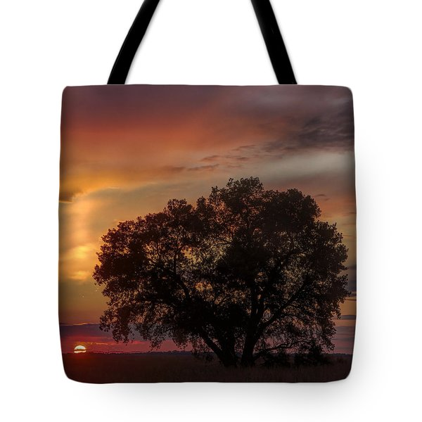 Tote Bag featuring the photograph Light Pillar And Cottonwood by Rob Graham