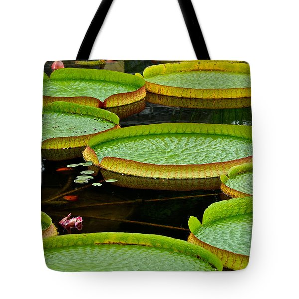 Lilly Pads Tote Bag by Frozen in Time Fine Art Photography
