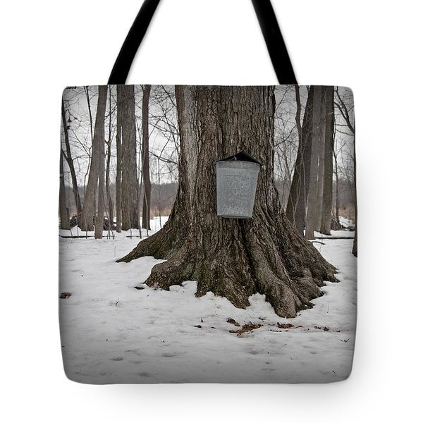 Maple Sugaring Tote Bag