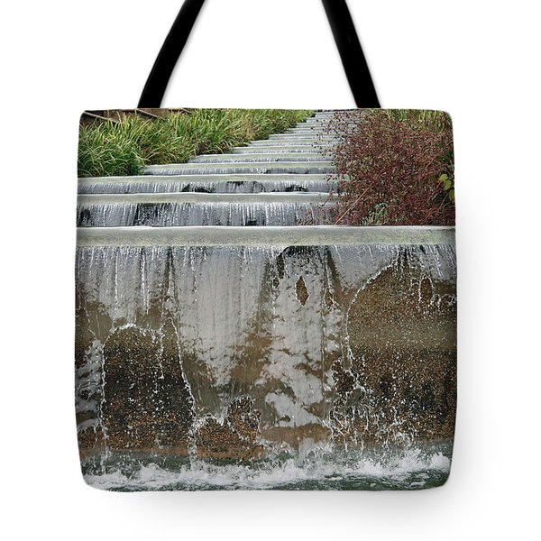 Meridian Hill Park Tote Bag by Cora Wandel