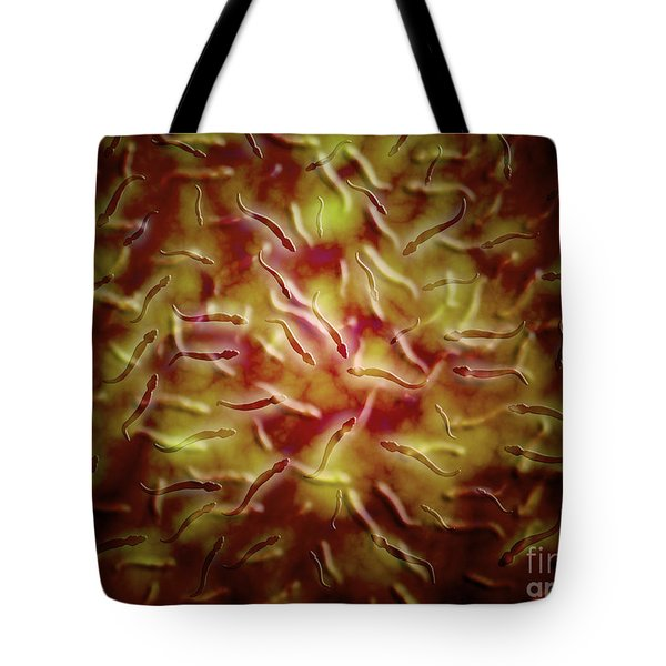 Microscopic View Of Sperm Tote Bag by Stocktrek Images