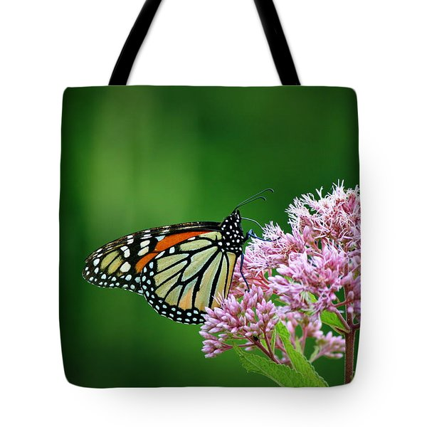 Monarch In Light  Tote Bag