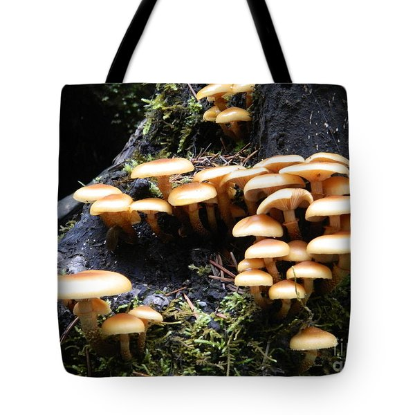 Tote Bag featuring the photograph Mushrooms On A Stump by Chalet Roome-Rigdon