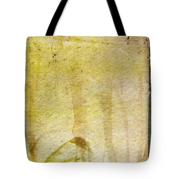 Music Of My Life Tote Bag by Brett Pfister