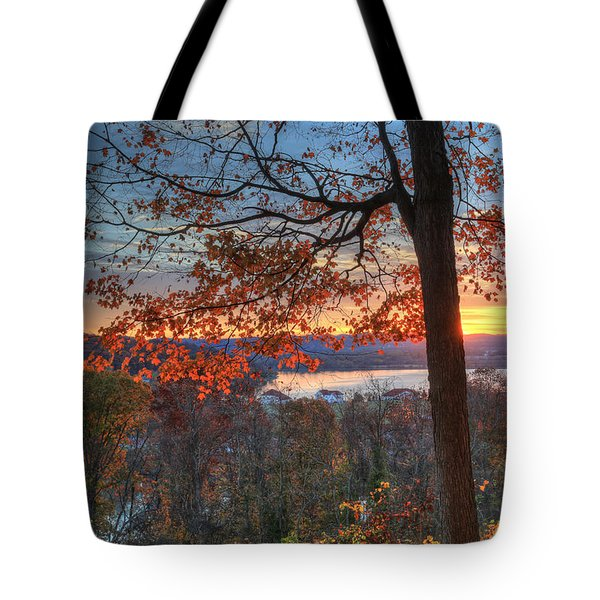 Nathan's View Tote Bag by Jaki Miller