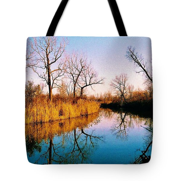 Tote Bag featuring the photograph November by Daniel Thompson
