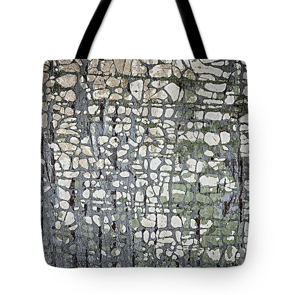 Old Painted Wood Abstract No.6 Tote Bag by Elena Elisseeva