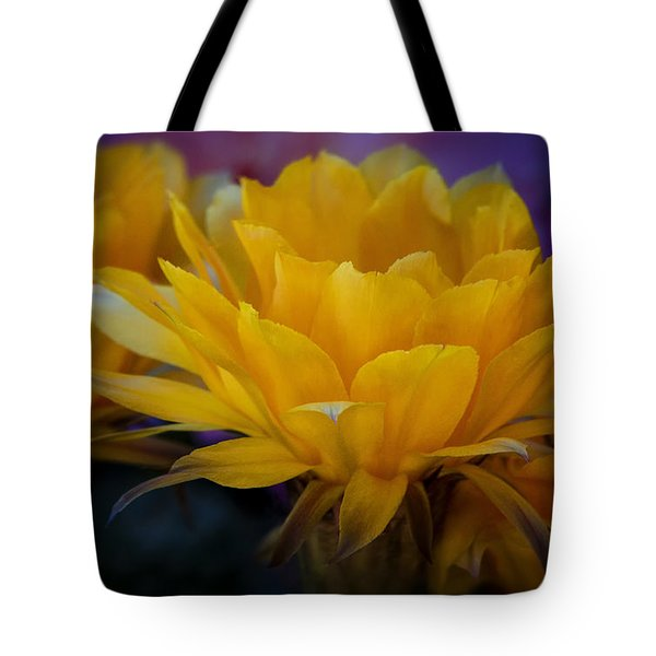 Orange Cactus Flowers  Tote Bag