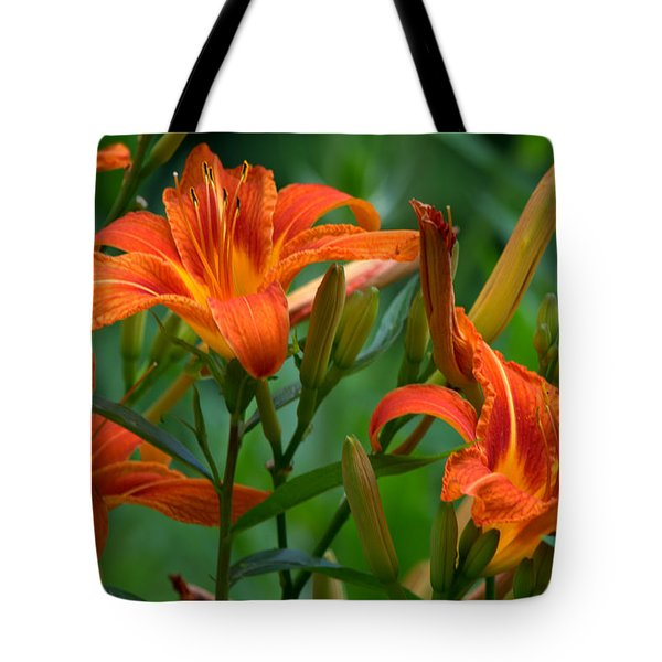 Tote Bag featuring the photograph Orange Lilly by Cathy Shiflett
