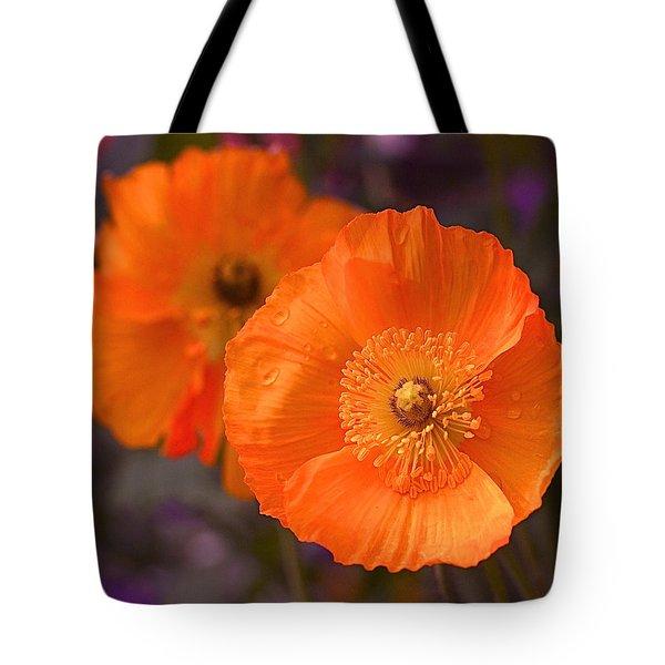 Orange Poppies Tote Bag by Rona Black