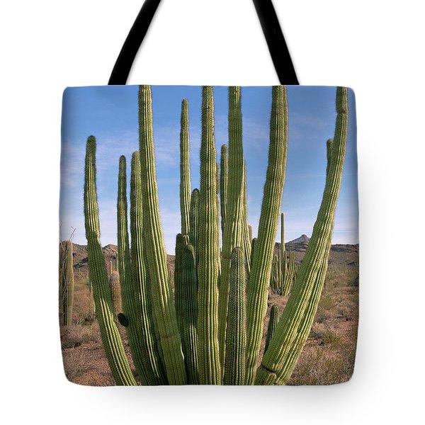 Organ Pipe Cactus Natl Monument Tote Bag