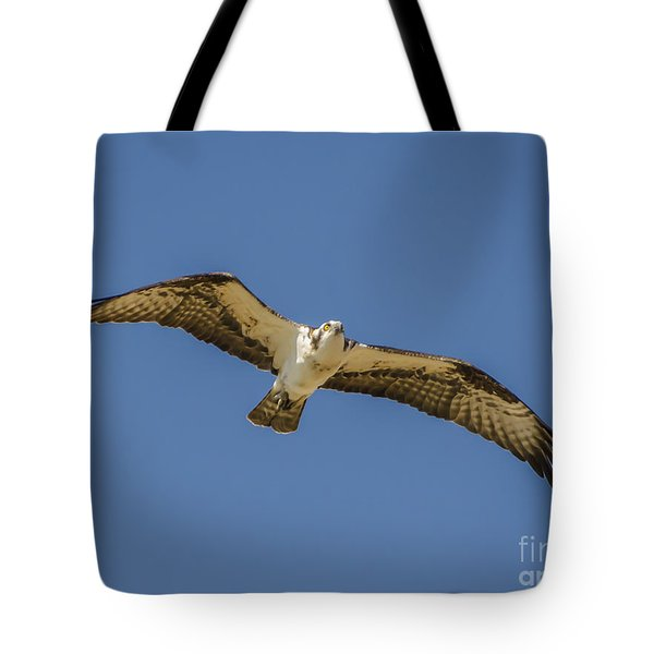 Tote Bag featuring the photograph Osprey In Flight Spreading His Wings by Dale Powell