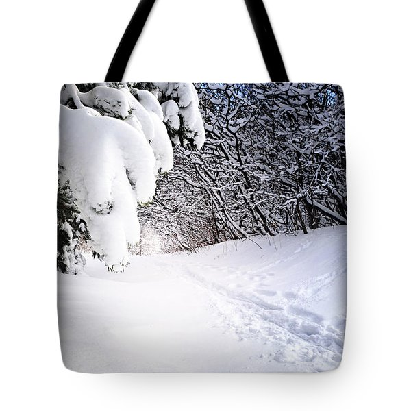 Path In Winter Forest Tote Bag
