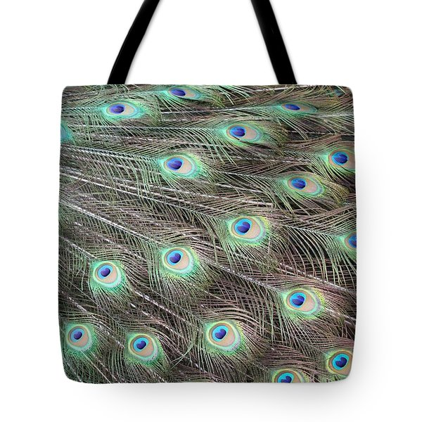 Peacock Feather Fiesta  Tote Bag by Diane Alexander