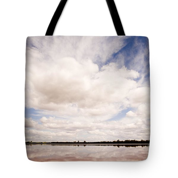Pink Lake Tote Bag by Tim Hester
