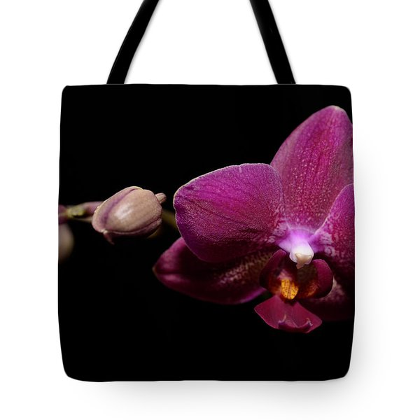 Pink Orchid Tote Bag by Tommytechno Sweden