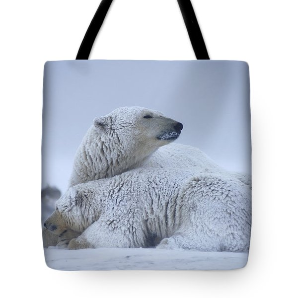 Polar Bear Sow With Cub Resting Tote Bag