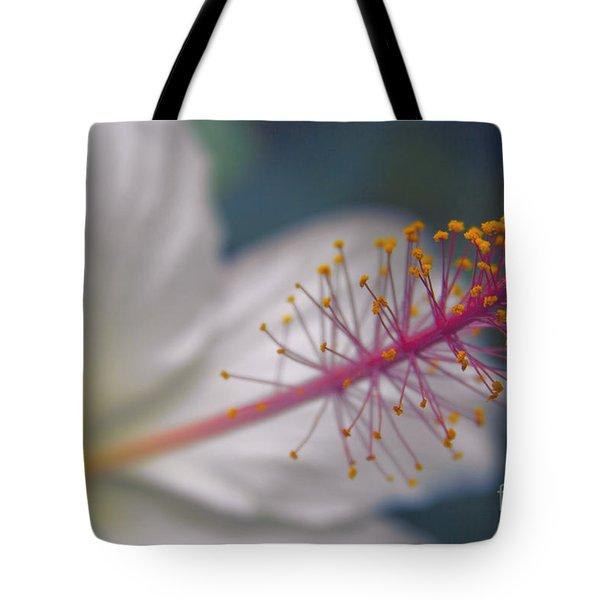 Pua Aloalo - Koki'o Ke'oke'o - Hibiscus Arnottianus - Hawaiian White Hibiscus  Tote Bag