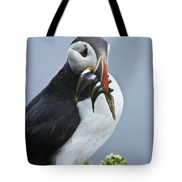 Puffin With Fish Tote Bag by Heiko Koehrer-Wagner